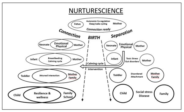Nuturescience (NSP Columbia view)
